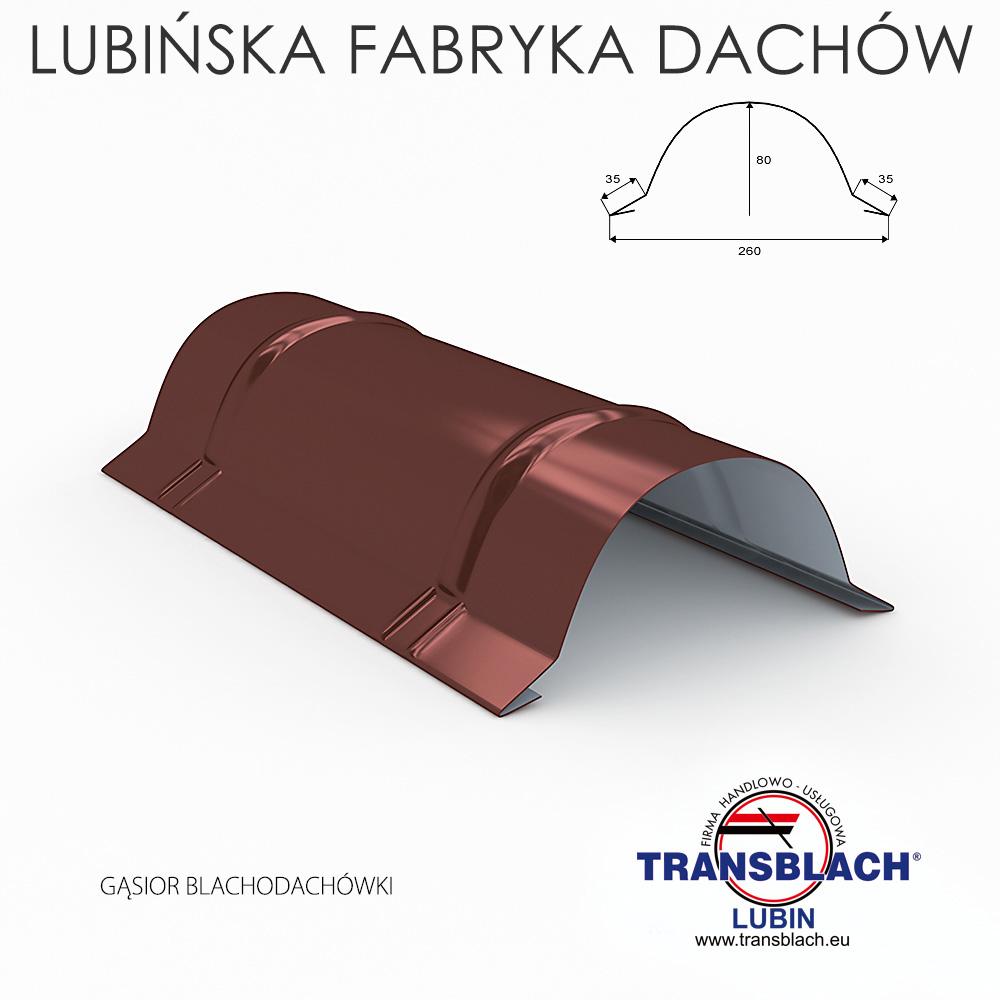 gasiorBlachodachowki